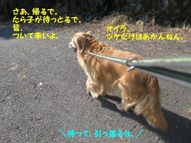 IMG_7439.jpg