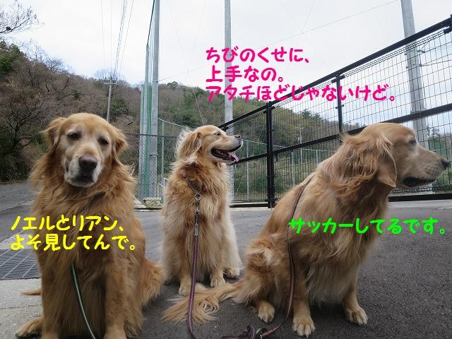 IMG_7793.jpg