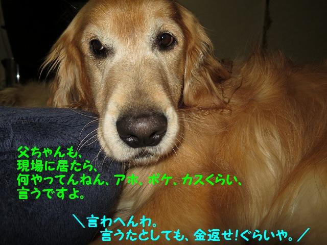 IMG_7897.jpg