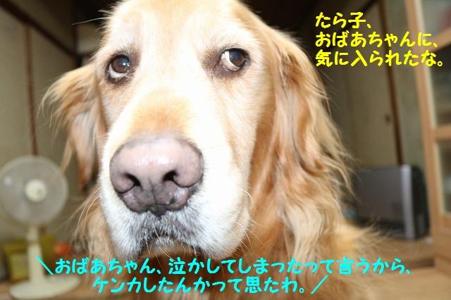 IMG_8620.jpg