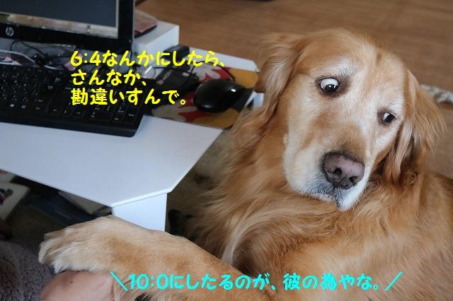 IMG_8879.jpg