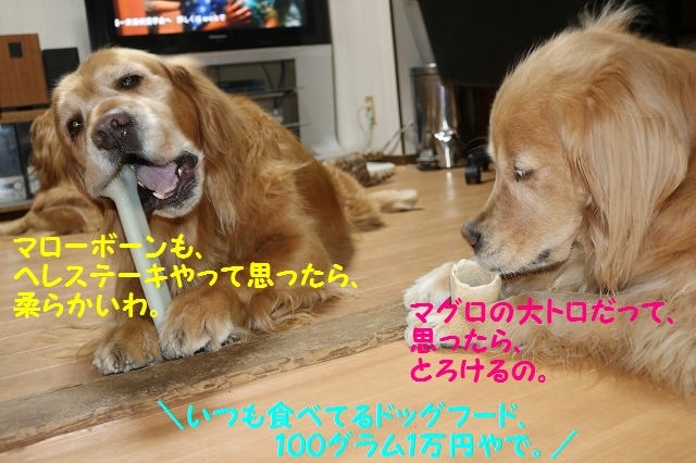 IMG_9103.jpg