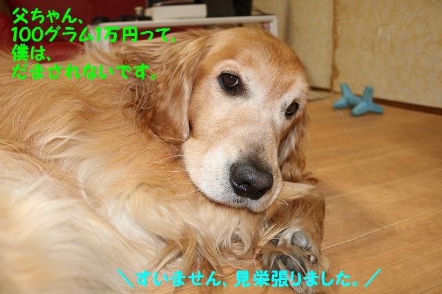 IMG_9117.jpg
