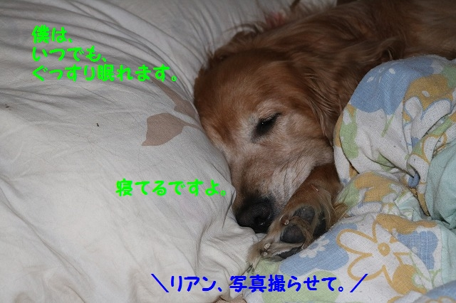 IMG_9137.jpg