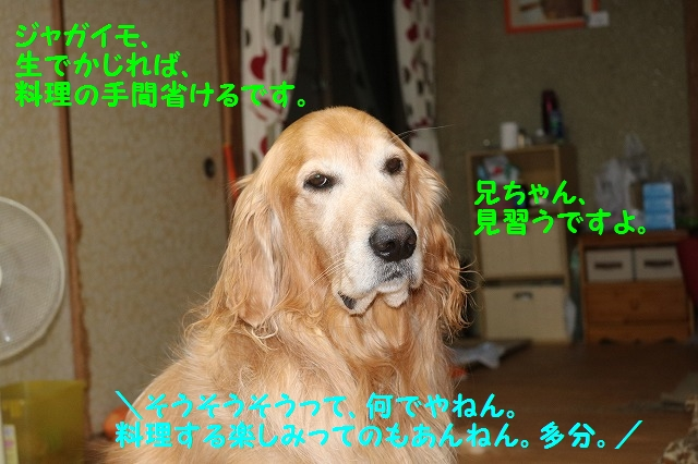 IMG_9162.jpg
