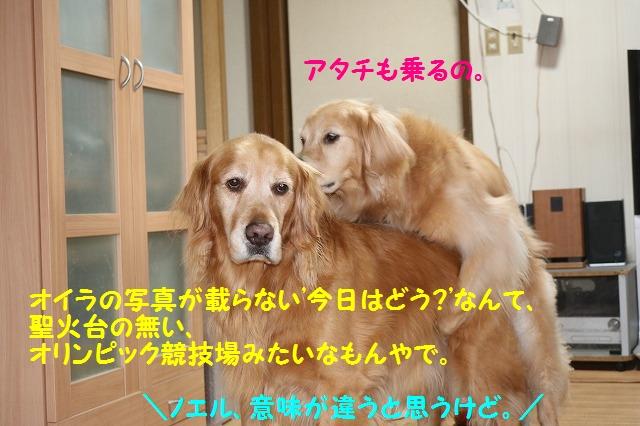 IMG_9257a.jpg