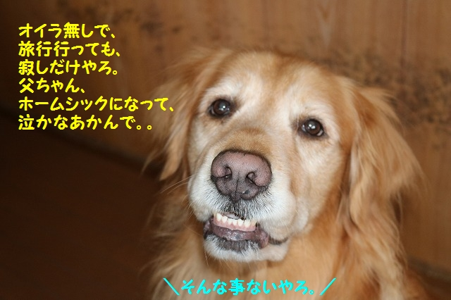 IMG_9494.jpg
