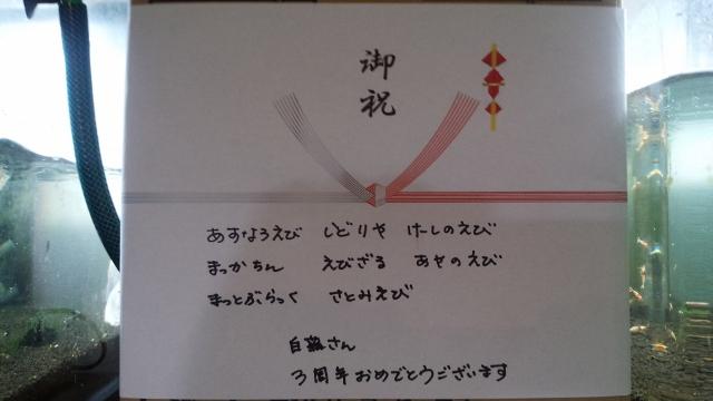 20160319花? (640x360)