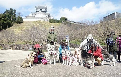 掛川城をバックに
