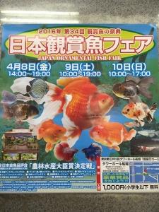 第34回観賞魚フェアポスター