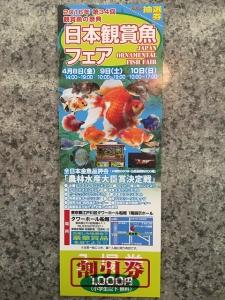 大34回観賞魚フェア割引券