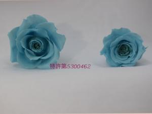髢玖干繝悶Ν繝シ+(2)_convert_20160314122607
