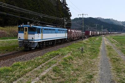 s-P1020339.jpg