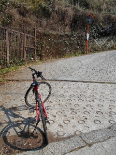 サイクリングで酷道308暗峠を行く!