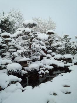 20160301雪2