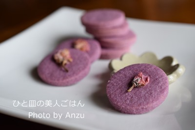 20160311 桜