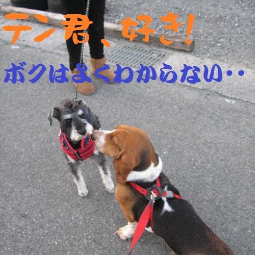 IMG_160314-9.jpg