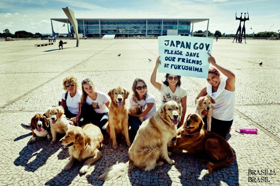 ブラジルから人々と犬