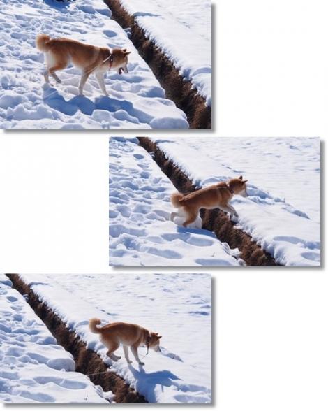 ジャンプ~