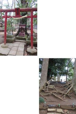 八坂神社境内