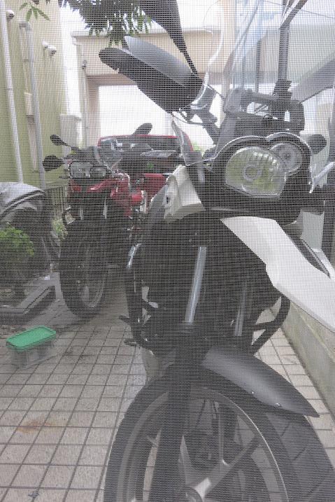 IMG_0406bb.jpg