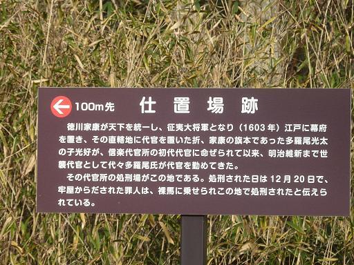 P1300535b.jpg