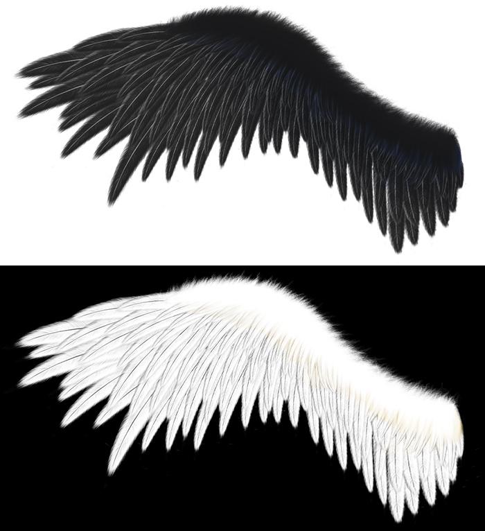 20160316羽白黒