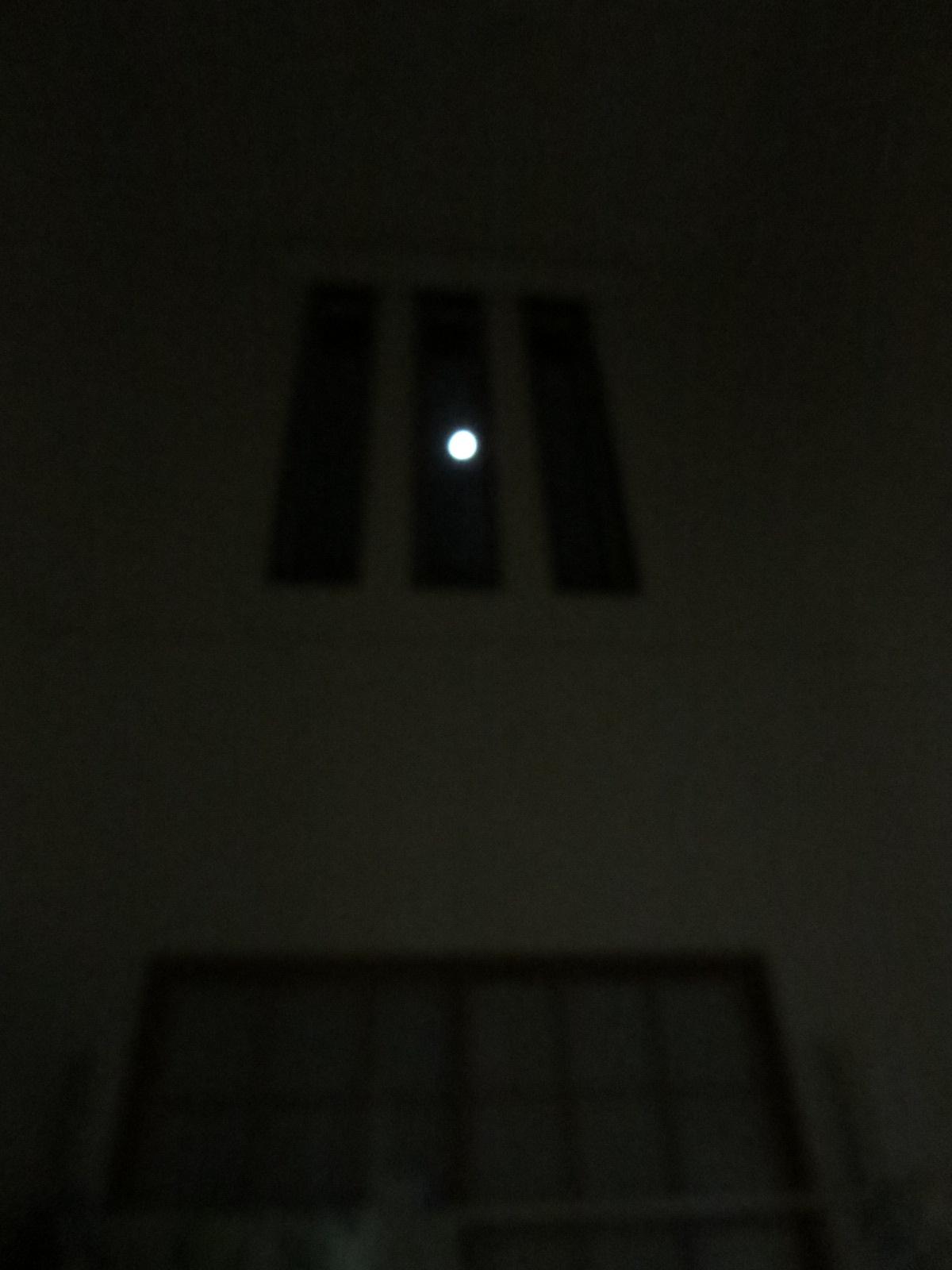 和室から月