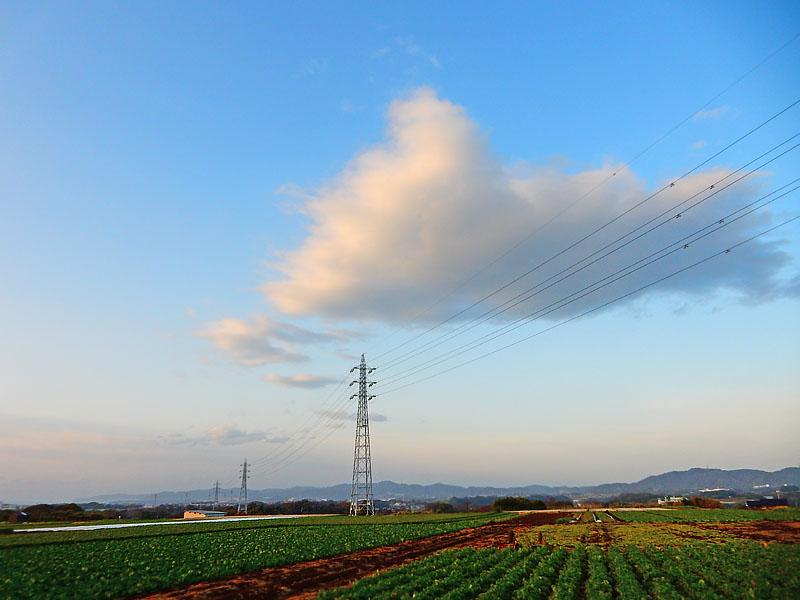 160214 畑と鉄塔 白い雲