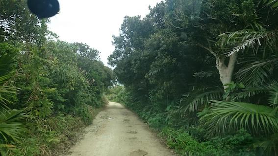 ガベール岬への道2