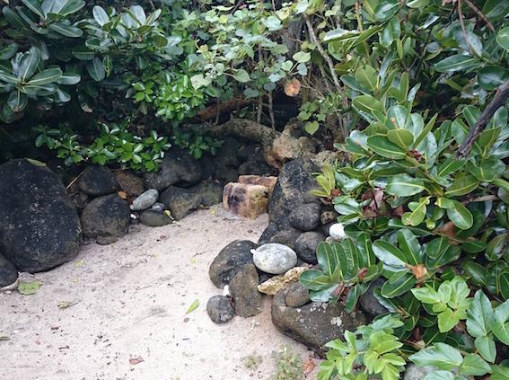 伊敷浜の拝所