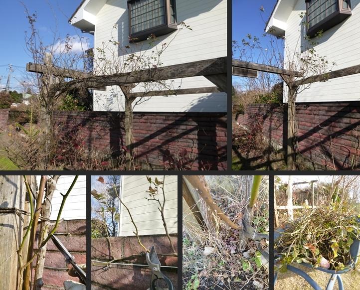 2015-12-24 2015-12-24 001 055-horz-vert