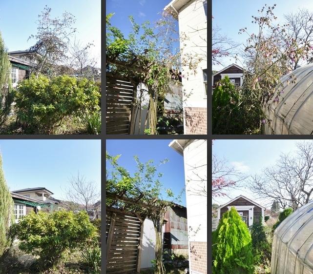 P1880348-horz-vert.jpg