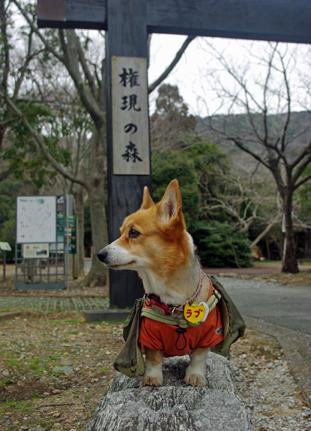 IMGP6708.jpg