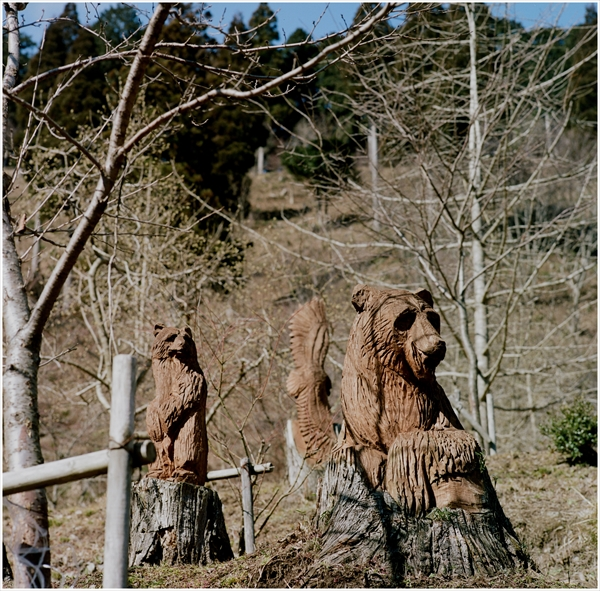 n-cf150-ハッセル-2016-2-7-徳山ダム-portra160-2-62770002_R