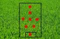grass-275986_640-5.jpg