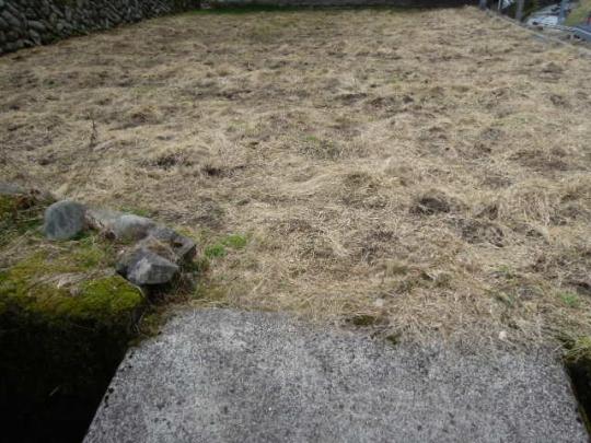 不耕起栽培 稲作 4畝 H28