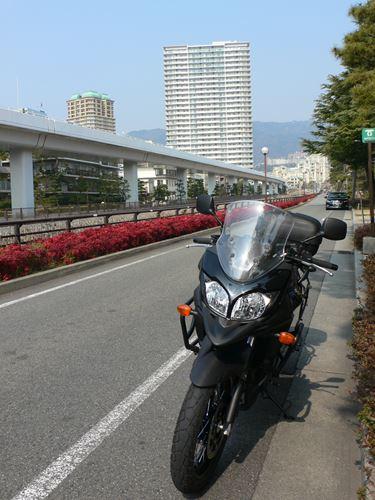 higasinadaku280227007_R.jpg