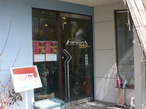 yamasemi2803002_R.jpg