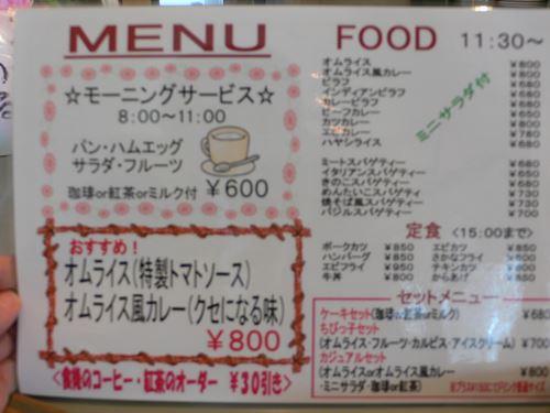 yamasemi2803005_R.jpg