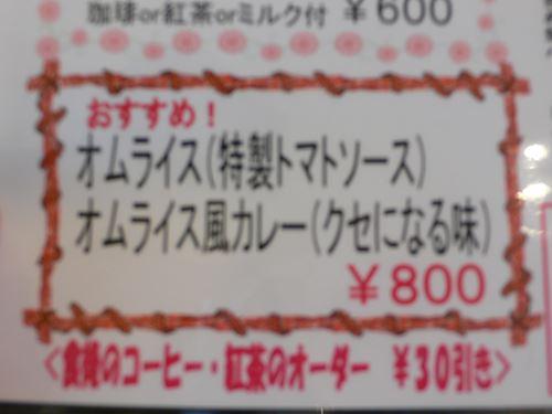 yamasemi2803006_R.jpg