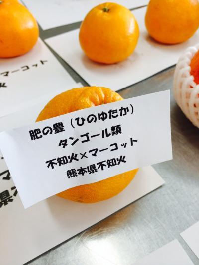 2016.3.3柑橘類4