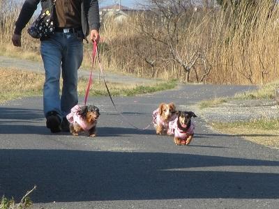 ばびゅーん!姫と小走り姉ちゃんズ