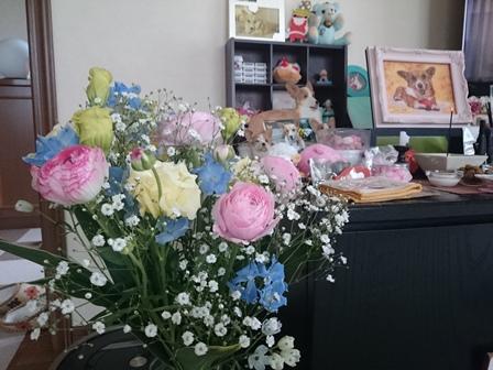 0313ひめお花
