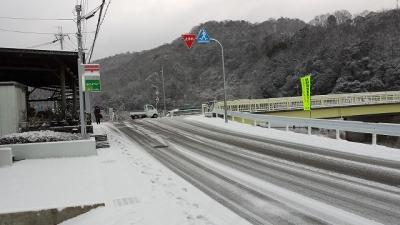 雪だぁ~1