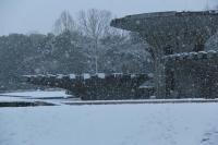 01251雪景色