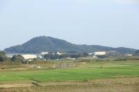 shiroyanma.jpg