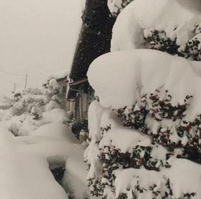 2016年1月庄原