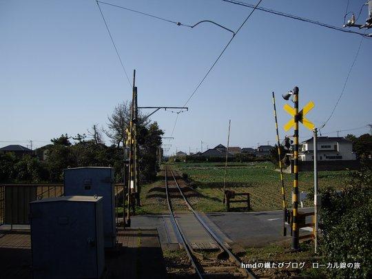 IMGP1859.jpg