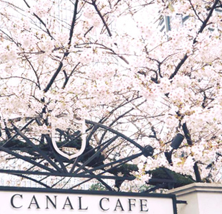 canalcafe_0404.jpg